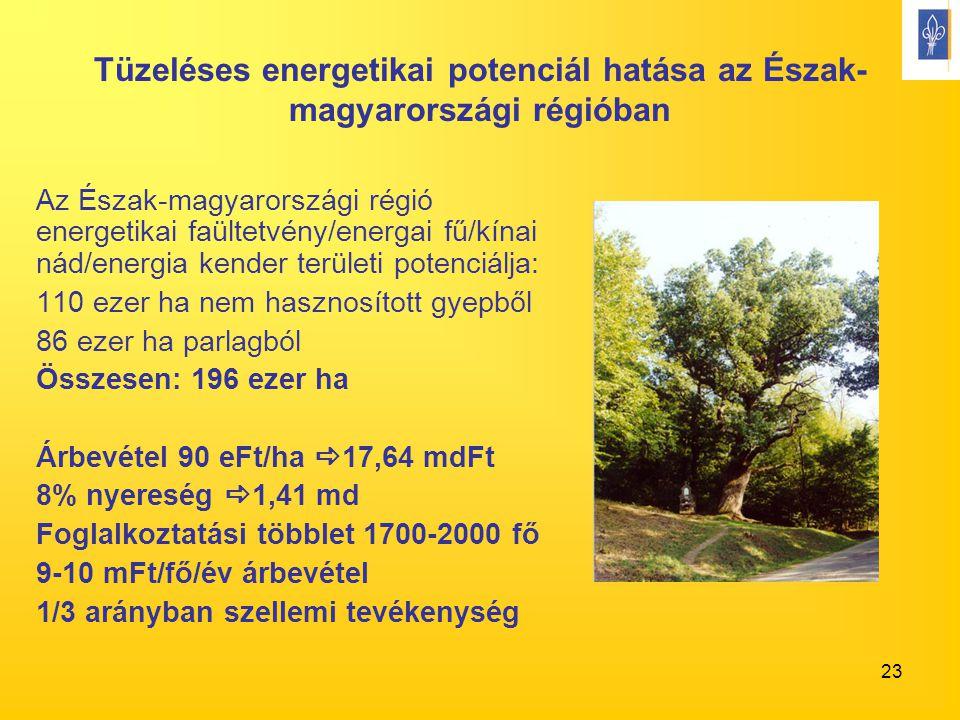 23 Tüzeléses energetikai potenciál hatása az Észak- magyarországi régióban Az Észak-magyarországi régió energetikai faültetvény/energai fű/kínai nád/energia kender területi potenciálja: 110 ezer ha nem hasznosított gyepből 86 ezer ha parlagból Összesen: 196 ezer ha Árbevétel 90 eFt/ha  17,64 mdFt 8% nyereség  1,41 md Foglalkoztatási többlet 1700-2000 fő 9-10 mFt/fő/év árbevétel 1/3 arányban szellemi tevékenység