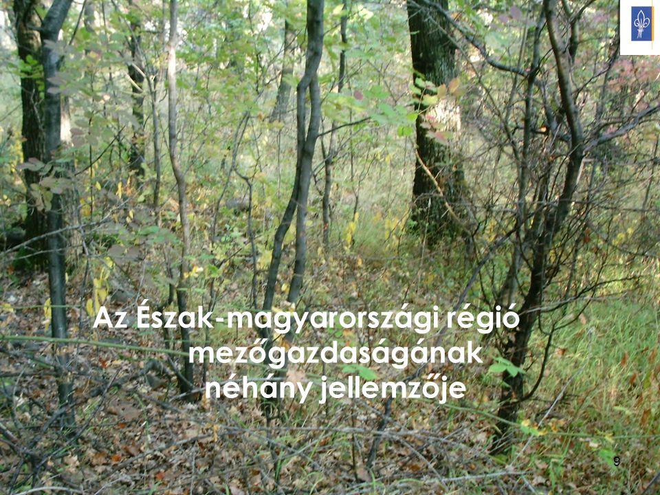 9 Az Észak-magyarországi régió mezőgazdaságának néhány jellemzője