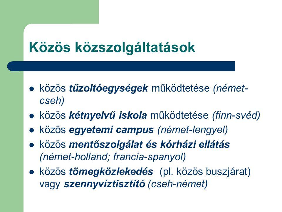 Közös közszolgáltatások közös tűzoltóegységek működtetése (német- cseh) közös kétnyelvű iskola működtetése (finn-svéd) közös egyetemi campus (német-lengyel) közös mentőszolgálat és kórházi ellátás (német-holland; francia-spanyol) közös tömegközlekedés (pl.