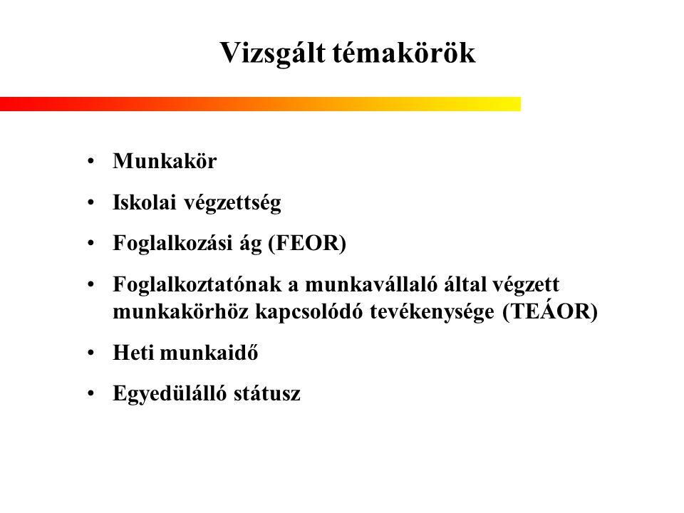 Vizsgált témakörök Munkakör Iskolai végzettség Foglalkozási ág (FEOR) Foglalkoztatónak a munkavállaló által végzett munkakörhöz kapcsolódó tevékenység