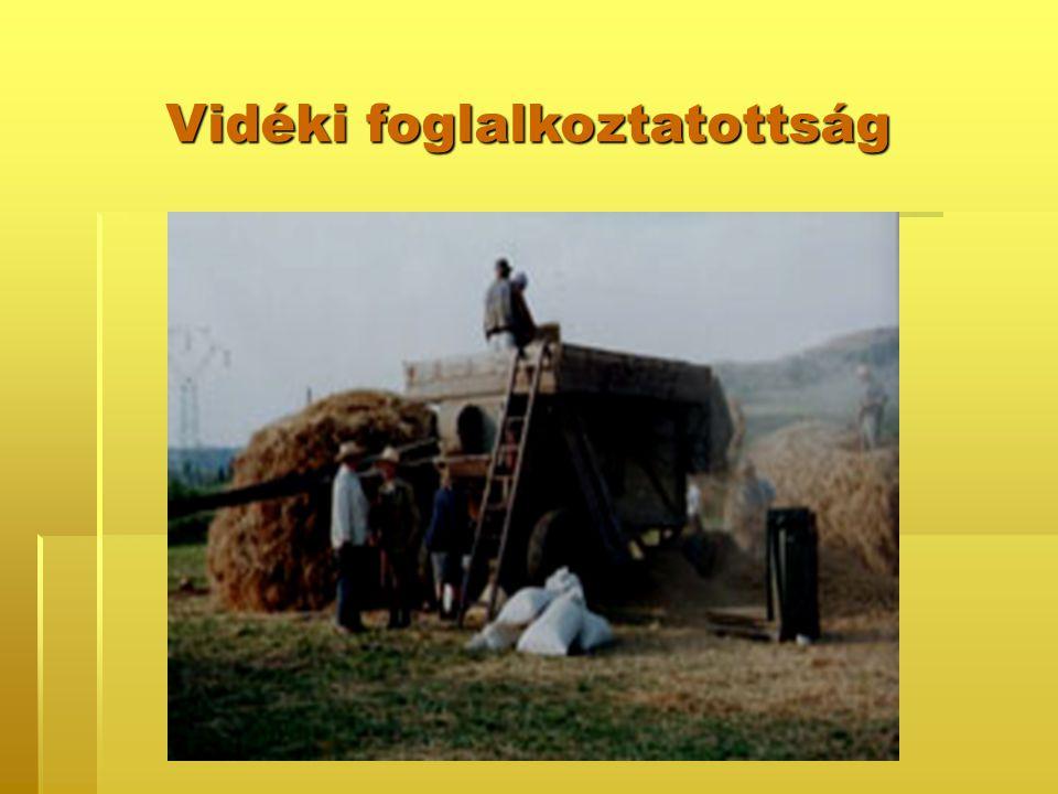 Vidéki foglalkoztatottság
