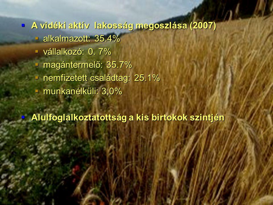  A vidéki aktív lakosság megoszlása (2007)  alkalmazott: 35.4%  vállalkozó: 0.
