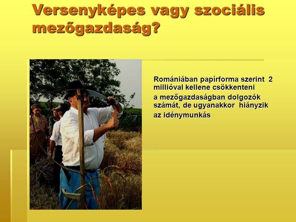 Versenyképes vagy szociális mezőgazdaság.