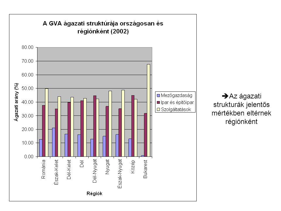  Az ágazati strukturák jelentős mértékben eltérnek régiónként