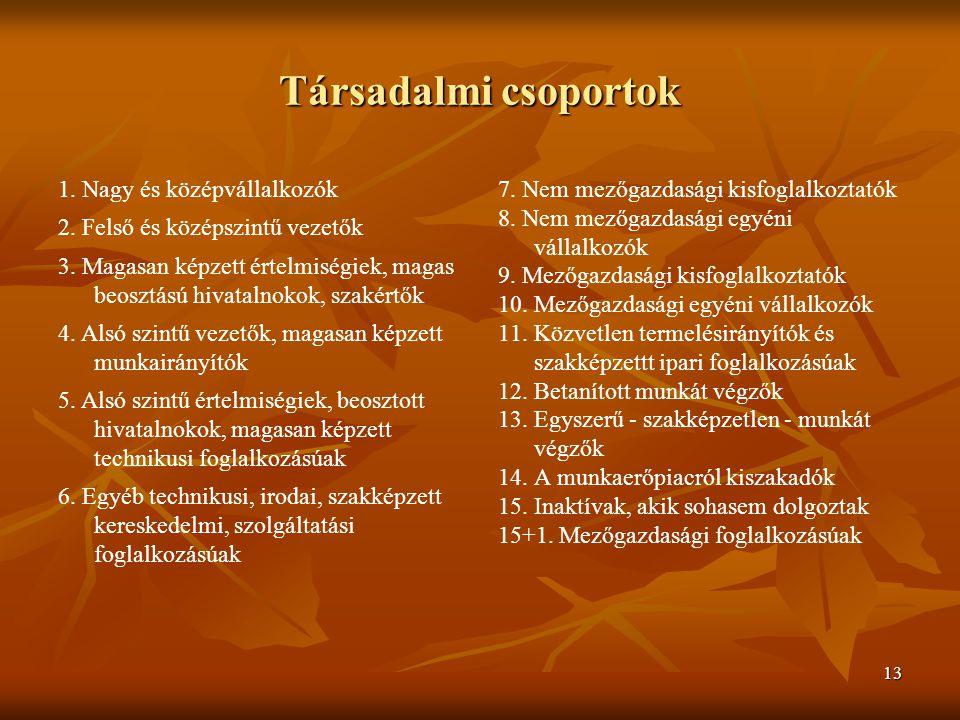 13 Társadalmi csoportok 7. Nem mezőgazdasági kisfoglalkoztatók 8.