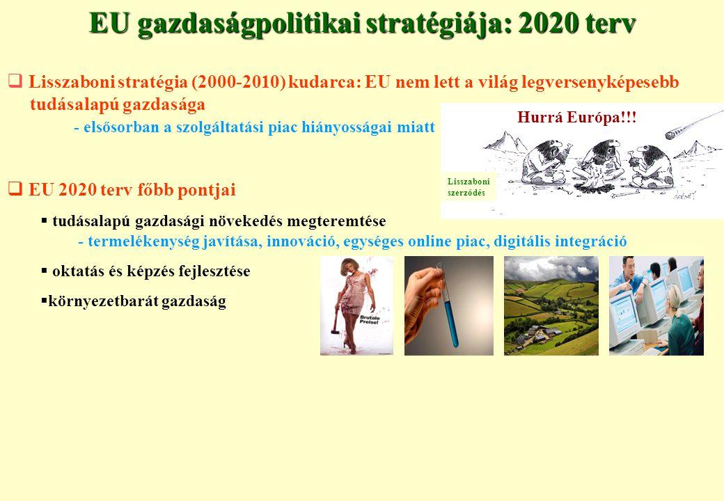 EU gazdaságpolitikai stratégiája: 2020 terv  Lisszaboni stratégia (2000-2010) kudarca: EU nem lett a világ legversenyképesebb tudásalapú gazdasága - elsősorban a szolgáltatási piac hiányosságai miatt  EU 2020 terv főbb pontjai  tudásalapú gazdasági növekedés megteremtése - termelékenység javítása, innováció, egységes online piac, digitális integráció  oktatás és képzés fejlesztése  környezetbarát gazdaság Lisszaboni szerződés Hurrá Európa!!!