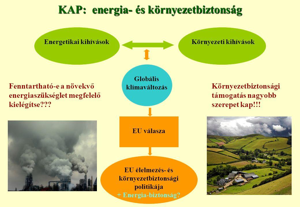 KAP: energia- és környezetbiztonság Energetikai kihívások Globális klímaváltozás EU élelmezés- és környezetbiztonsági politikája + Energia-biztonság.