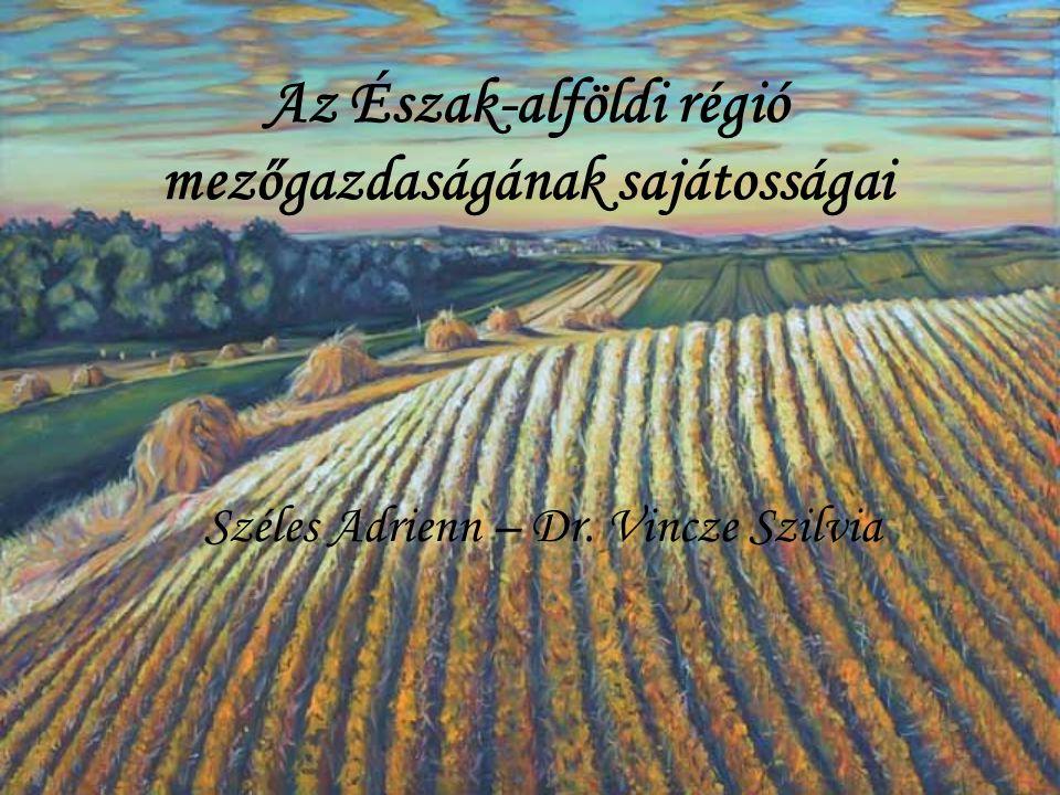 Az Észak-alföldi régió mezőgazdaságának sajátosságai Széles Adrienn – Dr. Vincze Szilvia