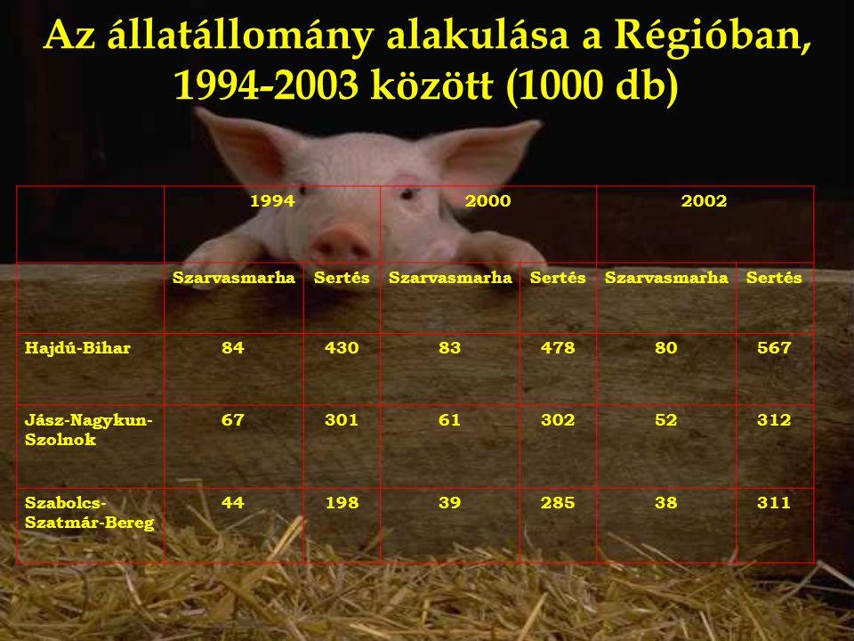 Az állatállomány alakulása a Régióban, 1994-2003 között (1000 db) 199420002002 SzarvasmarhaSertésSzarvasmarhaSertésSzarvasmarhaSertés Hajdú-Bihar84430