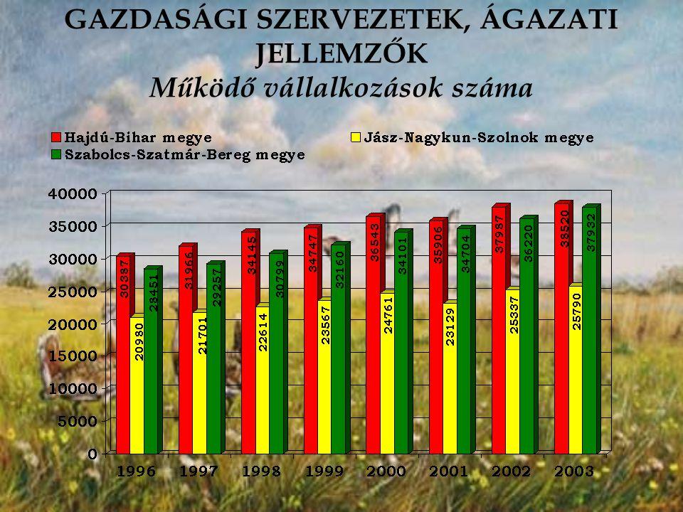 GAZDASÁGI SZERVEZETEK, ÁGAZATI JELLEMZŐK Működő vállalkozások száma