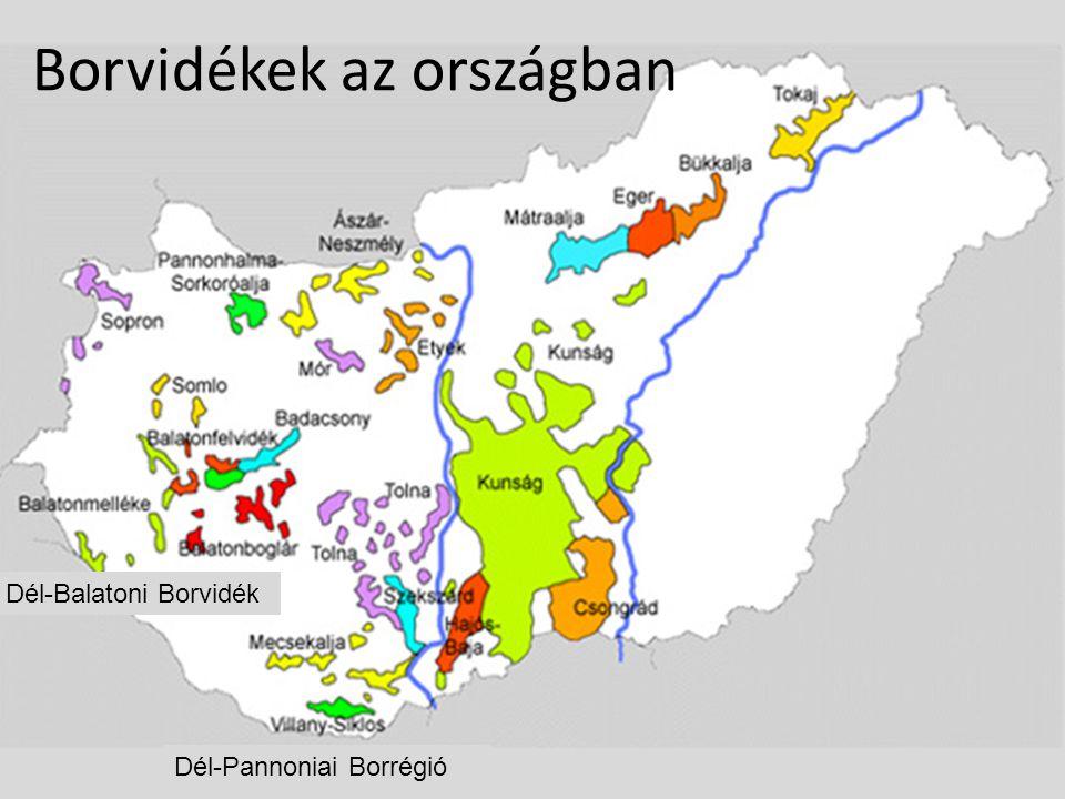 Dél-Balatoni Borvidék Dél-Pannoniai Borrégió Borvidékek az országban