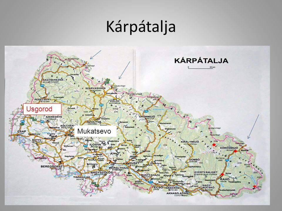 Kárpátalja vasúti – közlekedési rendszer ideális helyzete Katowicze Lviv Ternopol KassaMukacsevo Ivano Frankovszk Miskolc Debrecen Oradea Uzsgorod Csop