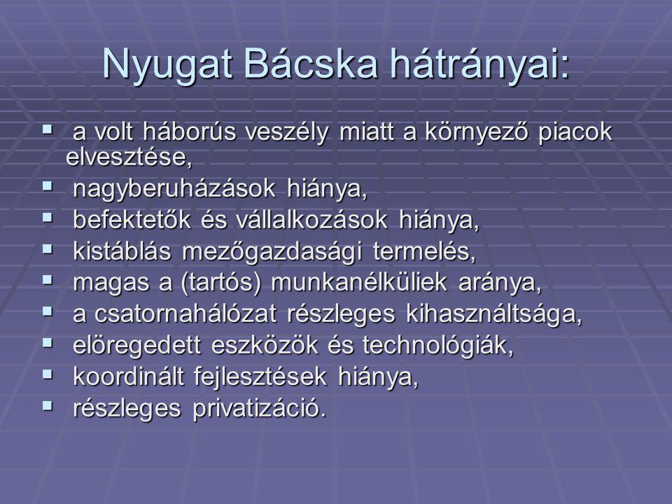 A magyar lakta települések jellemzői :  elöregedő lakosság és az etnikai arányok mesterséges megváltoztatása,  a fiatal értelmiségiek elvándorlása,  a rossz foglalkoztatási szerkezet,  a legtöbben a mezőgazdaságból élnek,  kevés helyi kisvállalkozás,  Szolgáltatások alig vannak jelen a piacon,  Erős a hagyományokhoz való kötődés,  Tisza, élhető környezet.