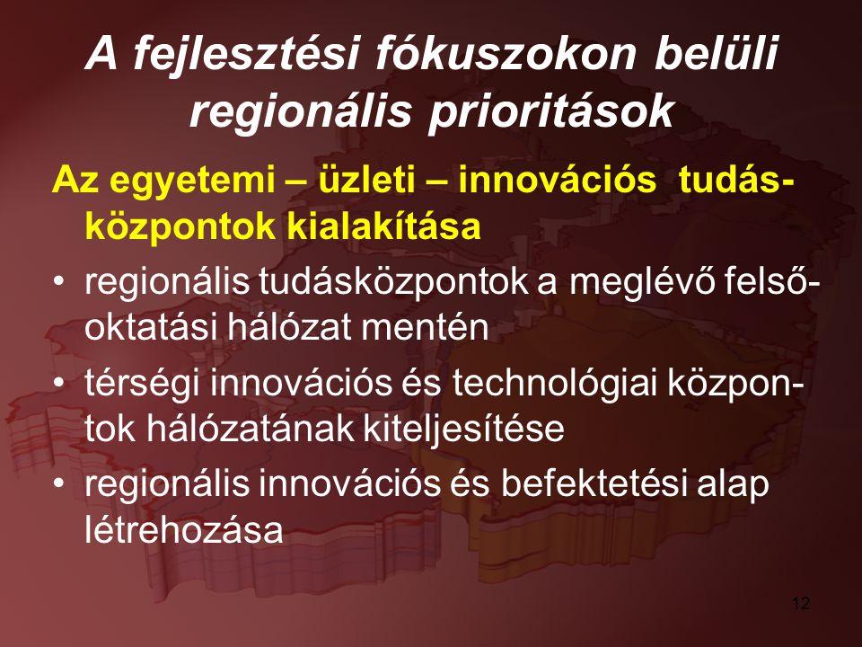 12 A fejlesztési fókuszokon belüli regionális prioritások Az egyetemi – üzleti – innovációs tudás- központok kialakítása regionális tudásközpontok a m