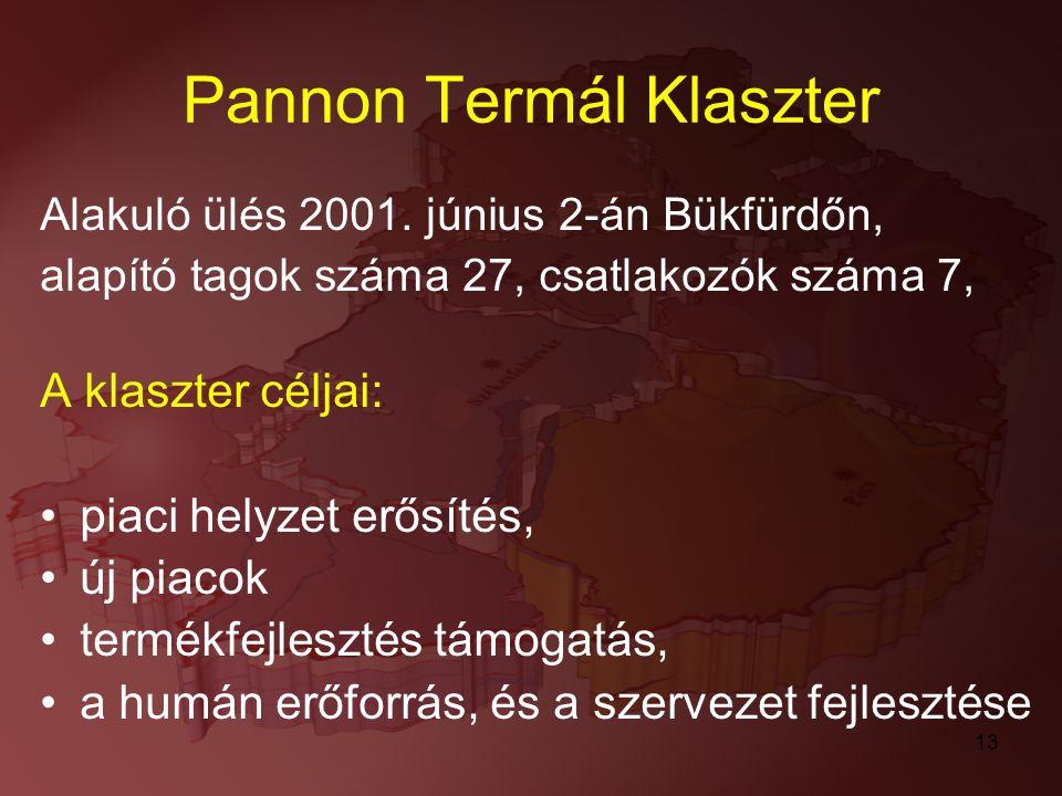 13 Pannon Termál Klaszter Alakuló ülés 2001. június 2-án Bükfürdőn, alapító tagok száma 27, csatlakozók száma 7, A klaszter céljai: piaci helyzet erős