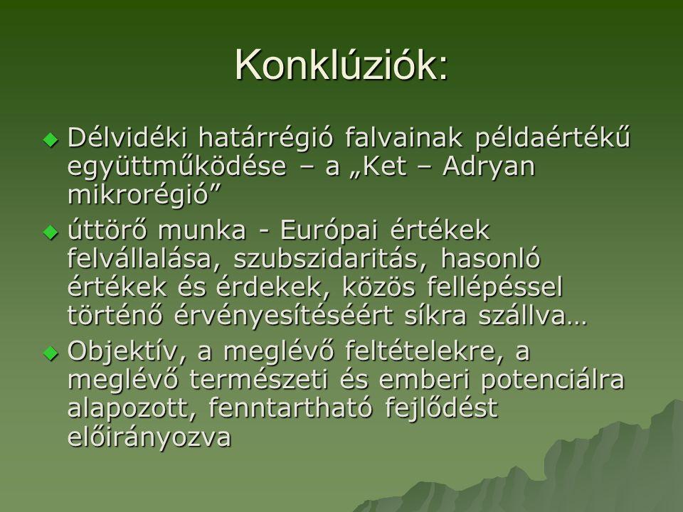 """Konklúziók:  Délvidéki határrégió falvainak példaértékű együttműködése – a """"Ket – Adryan mikrorégió  úttörő munka - Európai értékek felvállalása, szubszidaritás, hasonló értékek és érdekek, közös fellépéssel történő érvényesítéséért síkra szállva…  Objektív, a meglévő feltételekre, a meglévő természeti és emberi potenciálra alapozott, fenntartható fejlődést előirányozva"""
