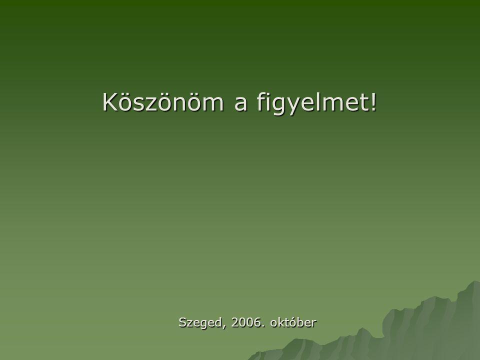 Köszönöm a figyelmet! Szeged, 2006. október