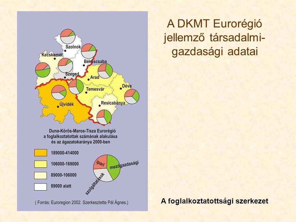 A DKMT Eurorégió jellemző társadalmi- gazdasági adatai A foglalkoztatottsági szerkezet