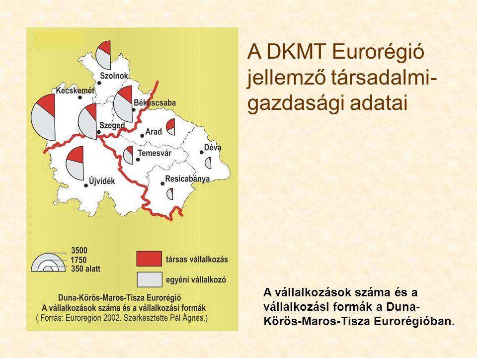 A DKMT Eurorégió jellemző társadalmi- gazdasági adatai A vállalkozások száma és a vállalkozási formák a Duna- Körös-Maros-Tisza Eurorégióban.