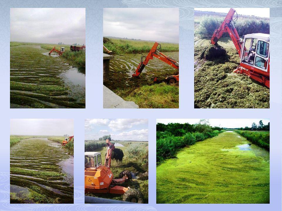  árvíz- és belvízvédelmi szolgálat – 103 nap  belvizek szivattyúzása (az átemelt belvíz mennyisége 169 millió m 3 )  vízi növényzet eltávolítása belvízelvezető csatornáinkból  nyúlgátak építése több helyen  vízvisszatartás a szivárgócsatornáinkon  bordás megtámasztás a Vág bal töltésének 24,6-os szelvényében