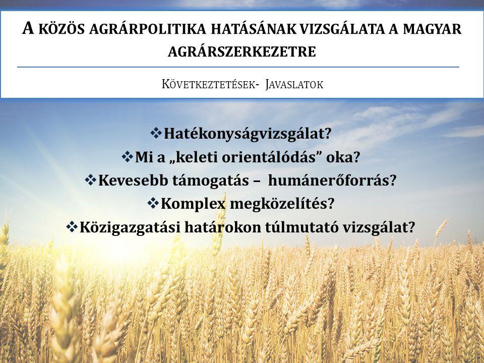 A KÖZÖS AGRÁRPOLITIKA HATÁSÁNAK VIZSGÁLATA A MAGYAR AGRÁRSZERKEZETRE K ÖVETKEZTETÉSEK - J AVASLATOK  Hatékonyságvizsgálat.