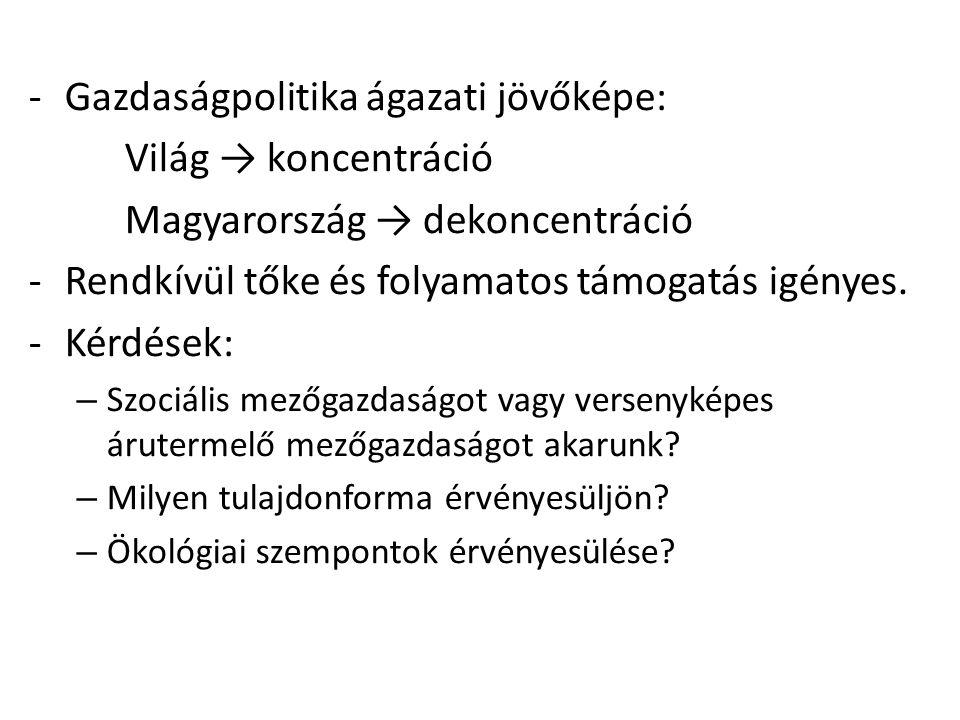 -Gazdaságpolitika ágazati jövőképe: Világ → koncentráció Magyarország → dekoncentráció -Rendkívül tőke és folyamatos támogatás igényes. -Kérdések: – S