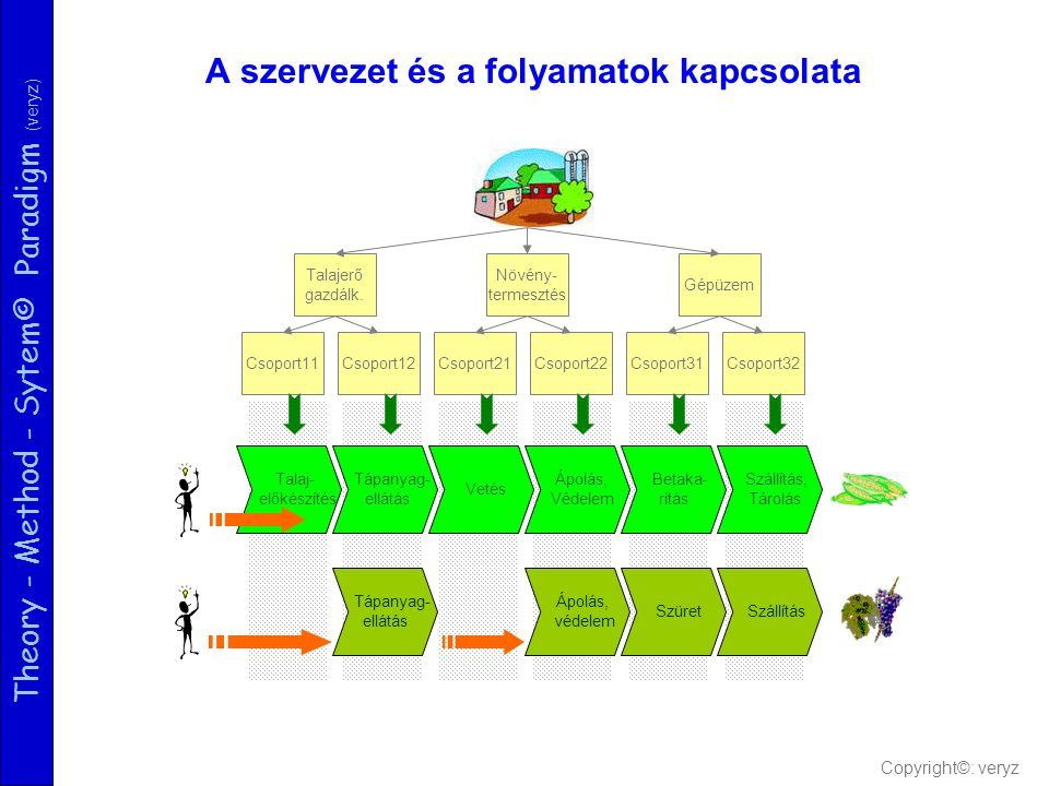 Theory - Method - Sytem© Paradigm (veryz) A szervezet és a folyamatok kapcsolata Csoport11Csoport12Csoport21Csoport22Csoport31Csoport32 Talajerő gazdálk.