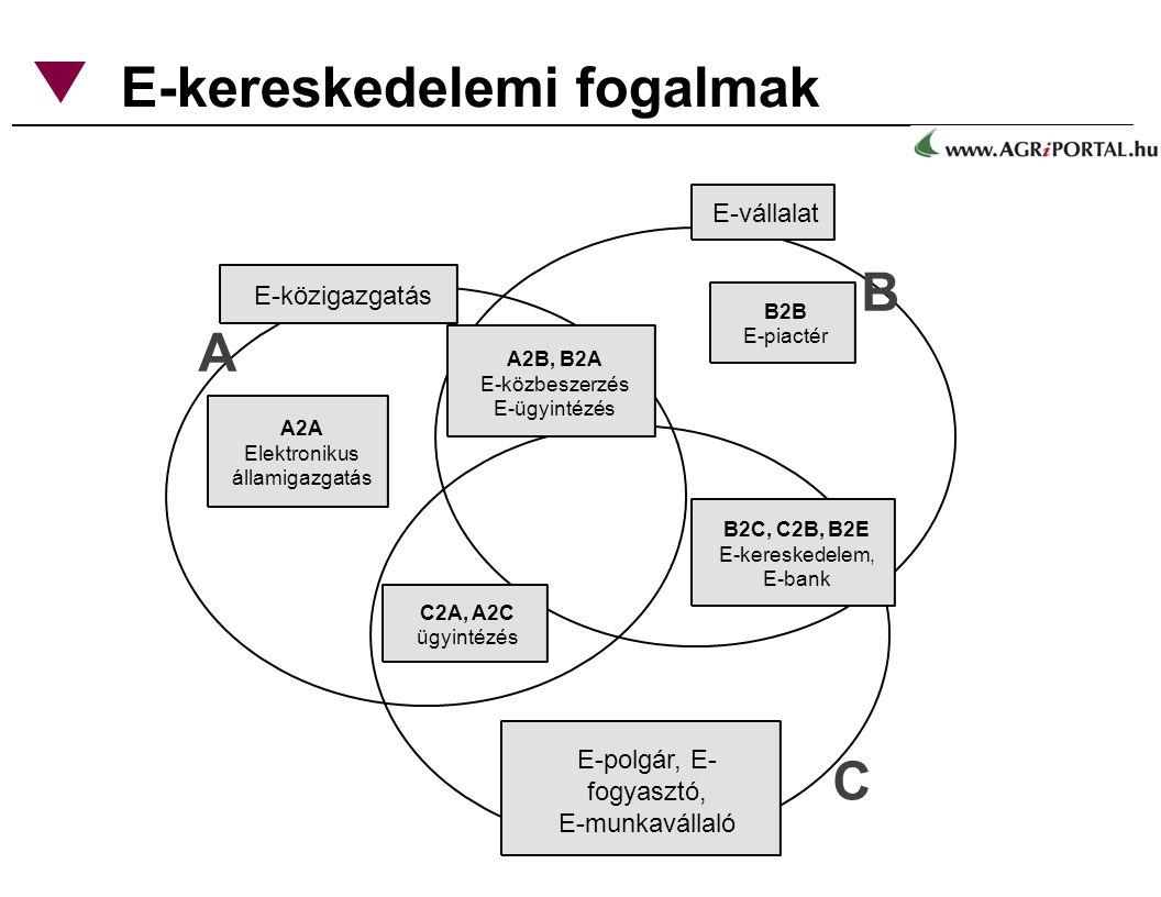 E-kereskedelemi fogalmak A2A Elektronikus államigazgatás A B C E-közigazgatás E-vállalat E-polgár, E- fogyasztó, E-munkavállaló C2A, A2C ügyintézés B2