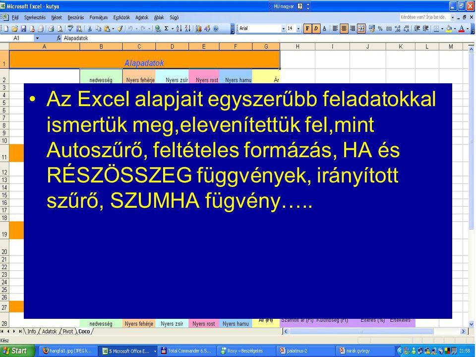 Az Excel alapjait egyszerűbb feladatokkal ismertük meg,elevenítettük fel,mint Autoszűrő, feltételes formázás, HA és RÉSZÖSSZEG függvények, irányított szűrő, SZUMHA fügvény…..