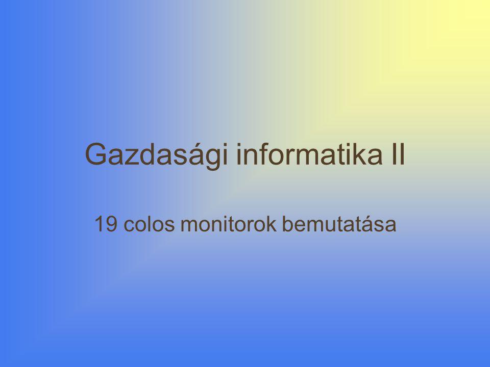 Gazdasági informatika II 19 colos monitorok bemutatása