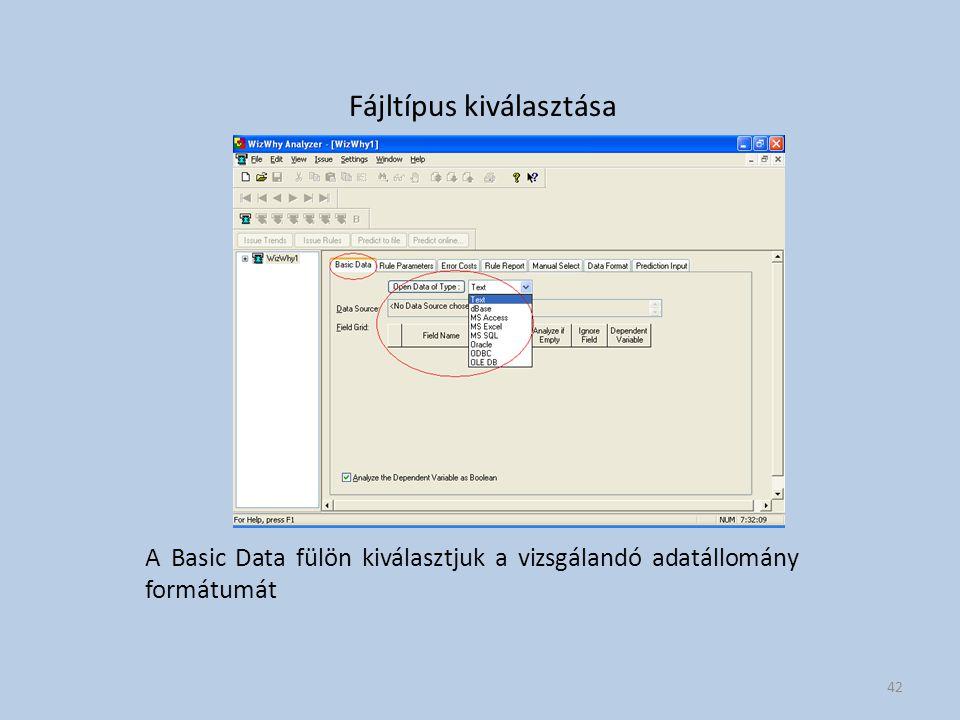 Fájltípus kiválasztása A Basic Data fülön kiválasztjuk a vizsgálandó adatállomány formátumát 42