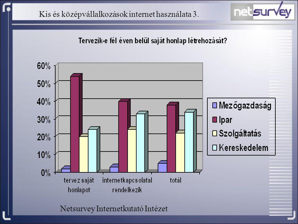 Kis és középvállalkozások internet használata 3. Netsurvey Internetkutató Intézet