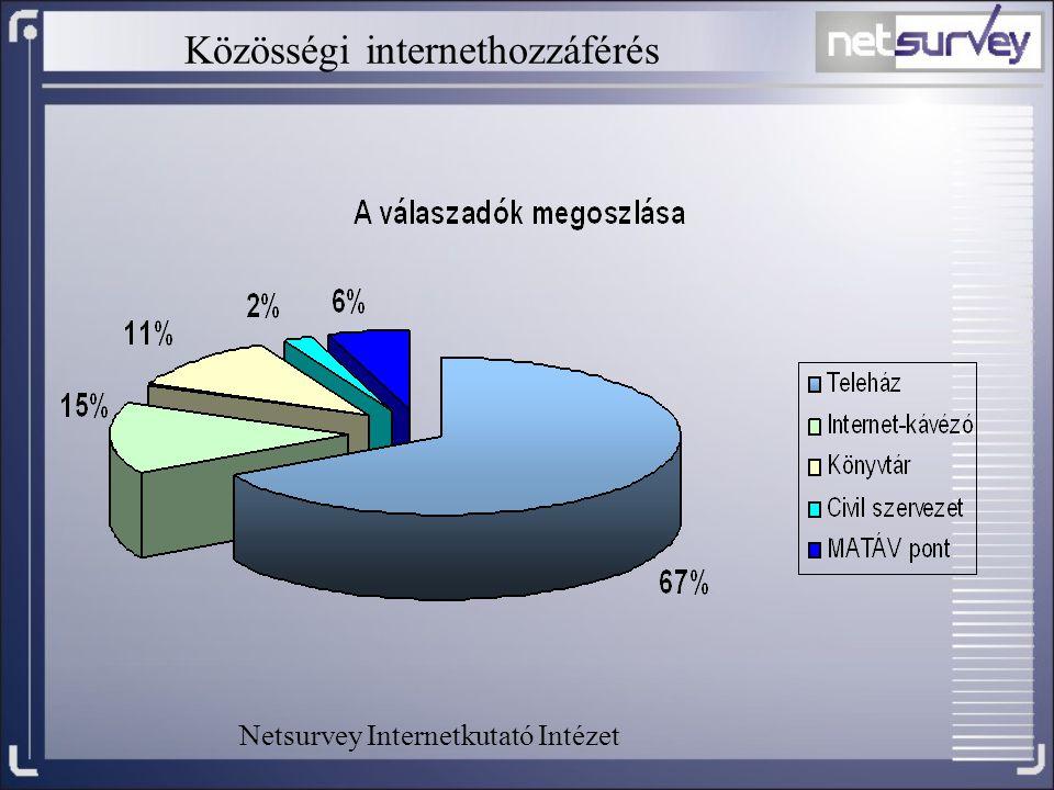 Közösségi internethozzáférés Netsurvey Internetkutató Intézet
