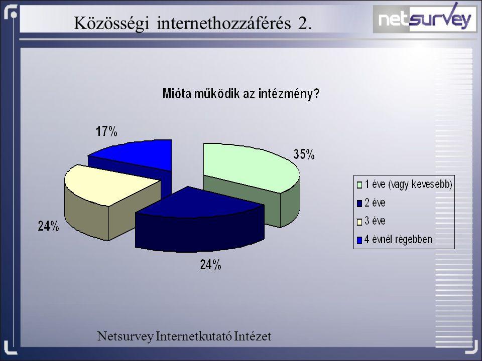Közösségi internethozzáférés 2. Netsurvey Internetkutató Intézet