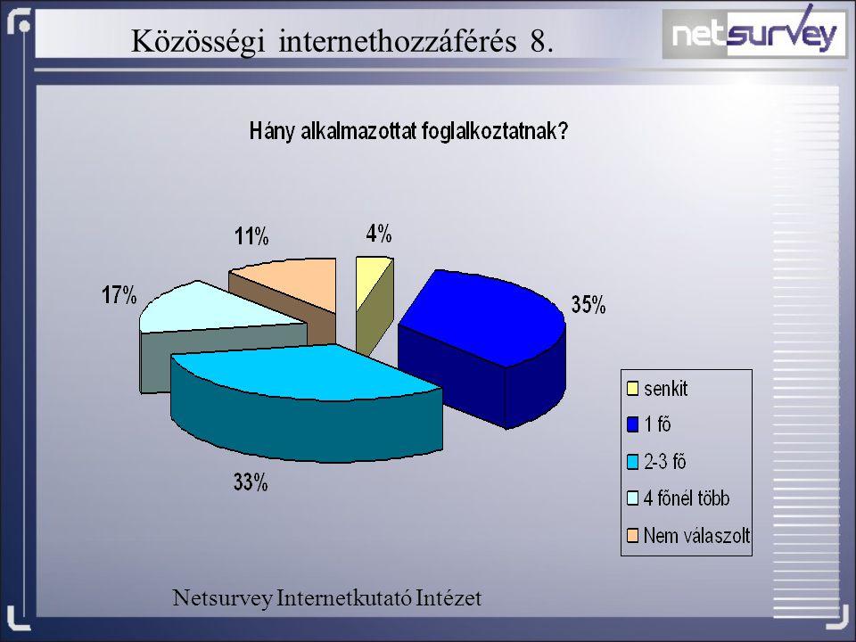 Közösségi internethozzáférés 8. Netsurvey Internetkutató Intézet