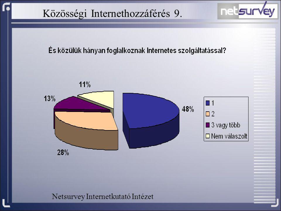 Közösségi Internethozzáférés 9. Netsurvey Internetkutató Intézet