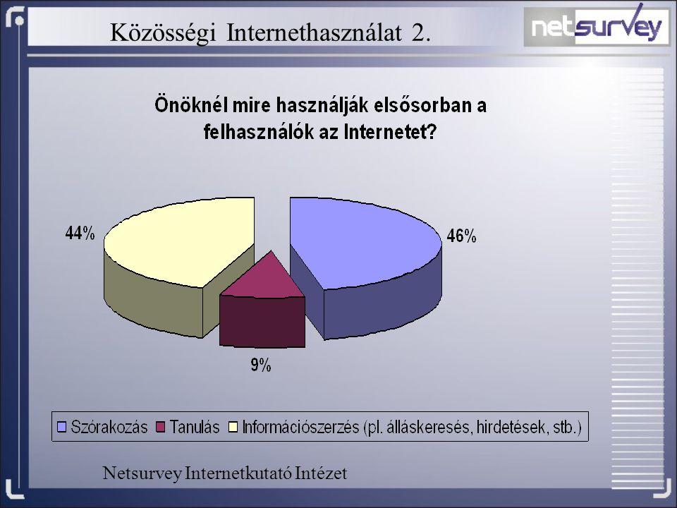 Közösségi Internethasználat 2. Netsurvey Internetkutató Intézet