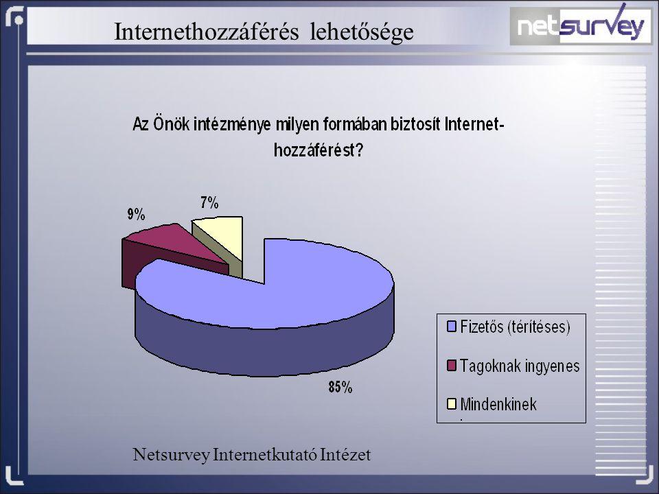 Internethozzáférés lehetősége Netsurvey Internetkutató Intézet