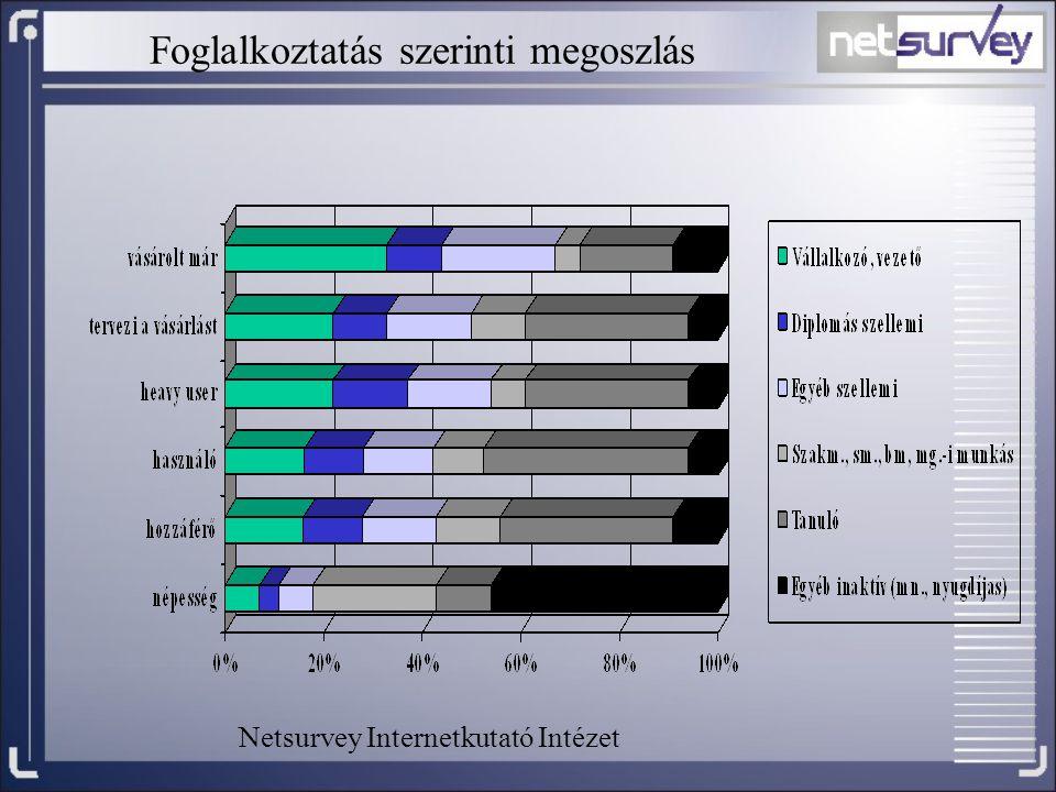 Foglalkoztatás szerinti megoszlás Netsurvey Internetkutató Intézet