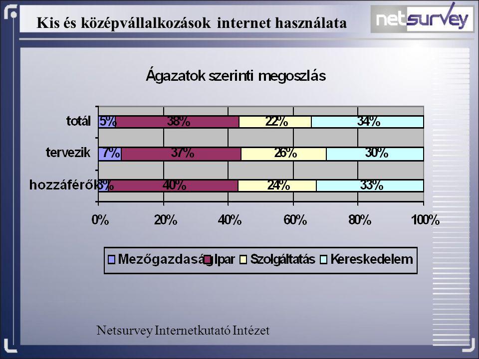 Kis és középvállalkozások internet használata Netsurvey Internetkutató Intézet