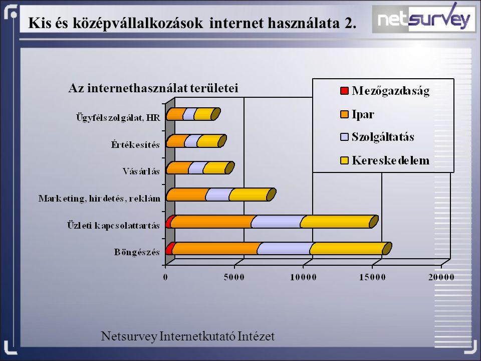 Kis és középvállalkozások internet használata 2. Az internethasználat területei Netsurvey Internetkutató Intézet