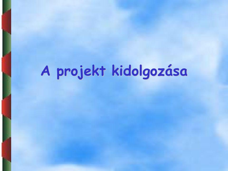 A projekt kidolgozása