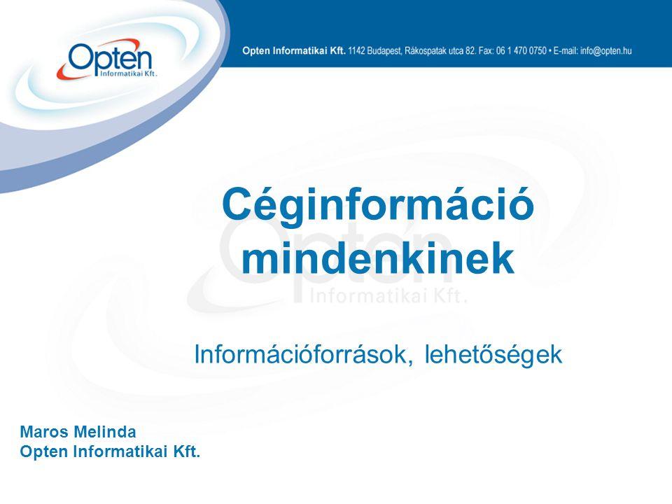 Maros Melinda Opten Informatikai Kft. Céginformáció mindenkinek Információforrások, lehetőségek