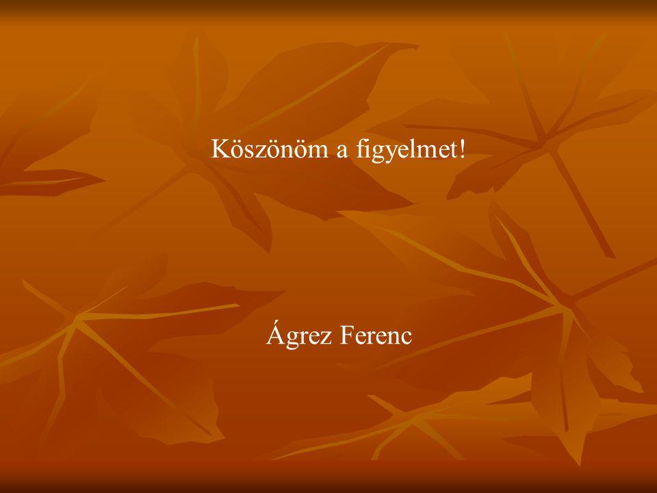 Köszönöm a figyelmet! Ágrez Ferenc