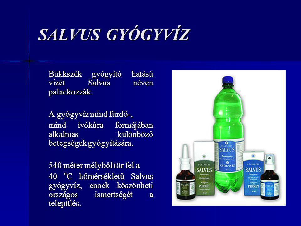 Polgármesteri Hivatal http://www.freeweb.hu/bukkszekph/int.htm