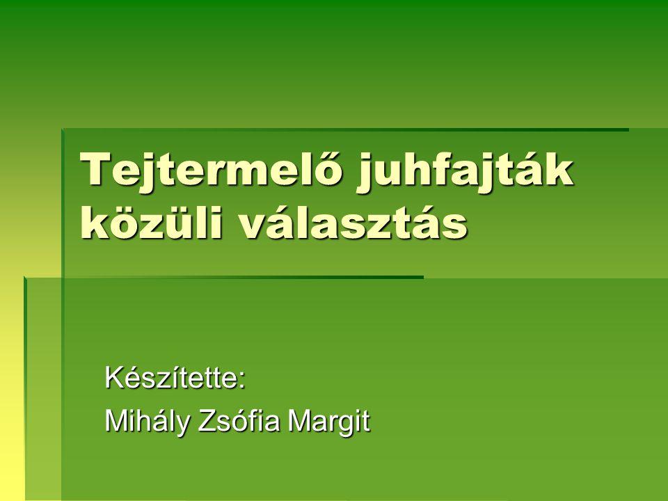 Tejtermelő juhfajták közüli választás Készítette: Mihály Zsófia Margit