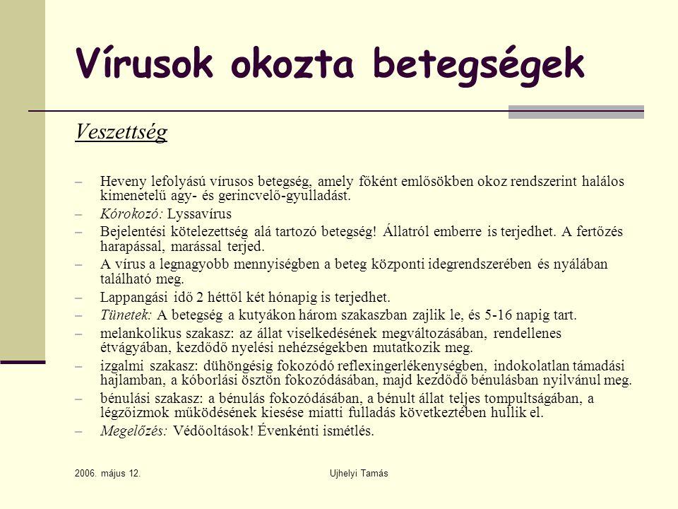 2006. május 12. Ujhelyi Tamás Vírusok okozta betegségek Veszettség – Heveny lefolyású vírusos betegség, amely főként emlősökben okoz rendszerint halál