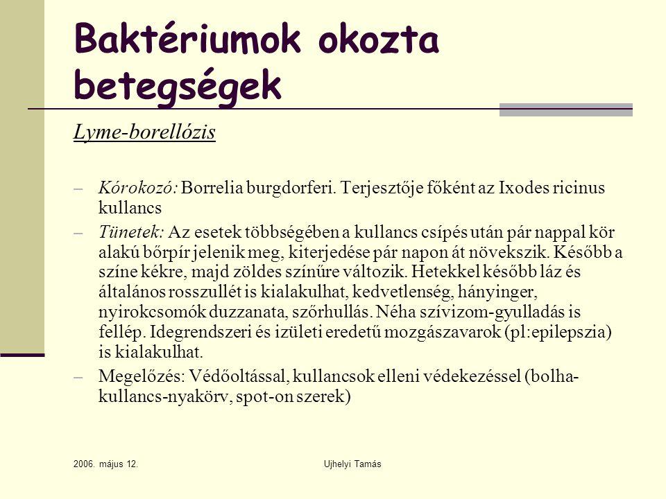 2006. május 12. Ujhelyi Tamás Baktériumok okozta betegségek Lyme-borellózis – Kórokozó: Borrelia burgdorferi. Terjesztője főként az Ixodes ricinus kul