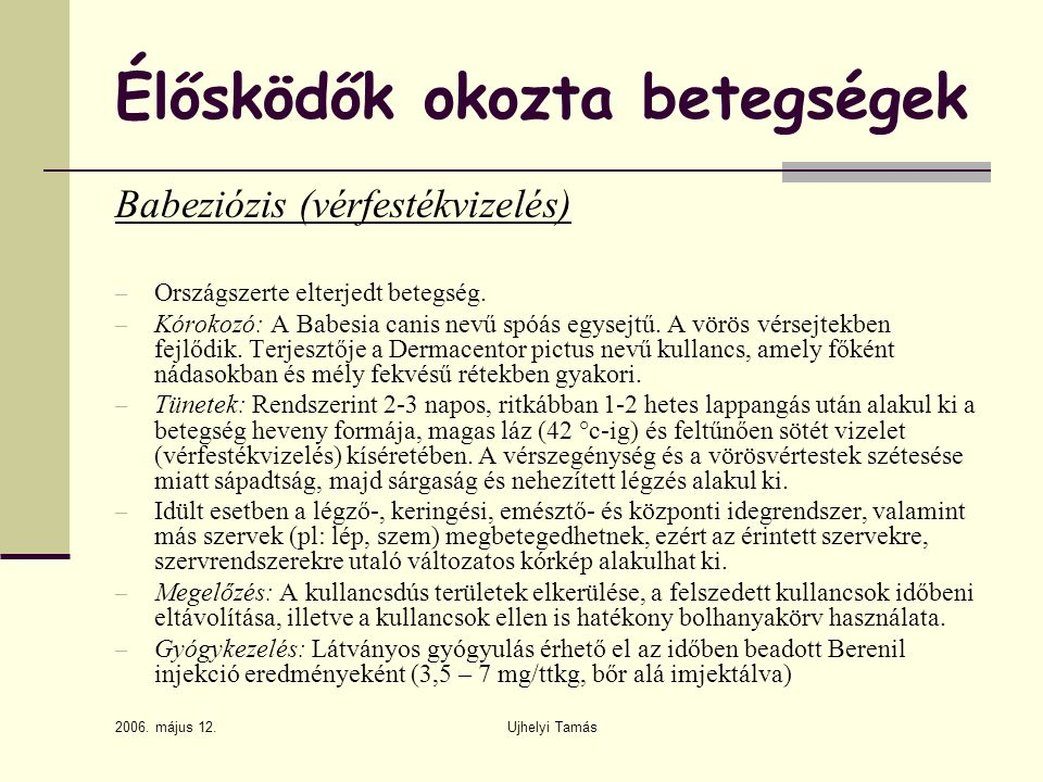 2006. május 12. Ujhelyi Tamás Élősködők okozta betegségek Babeziózis (vérfestékvizelés) – Országszerte elterjedt betegség. – Kórokozó: A Babesia canis