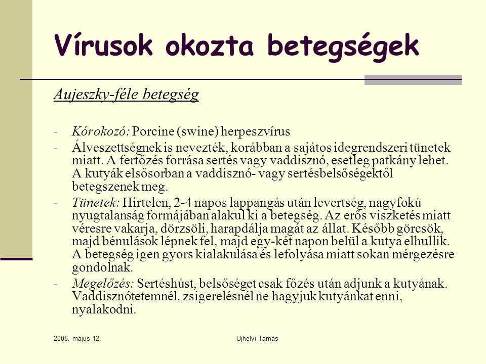 2006. május 12. Ujhelyi Tamás Vírusok okozta betegségek Aujeszky-féle betegség - Kórokozó: Porcine (swine) herpeszvírus - Álveszettségnek is nevezték,